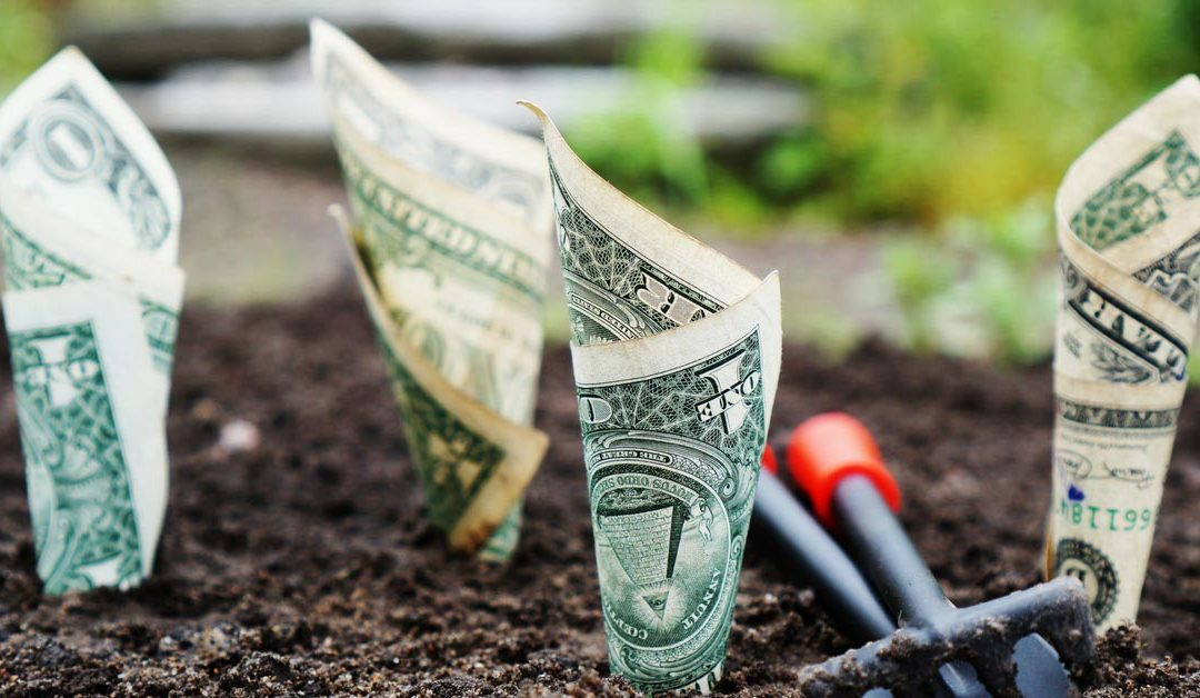 Jak pozyskać kapitał na pierwszą inwestycję